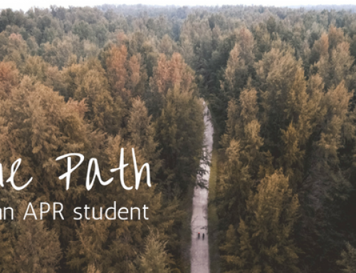 The Path of an APR Student